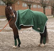Hest til salg - LUNDEBAKKEGÅRDS TUXEDO
