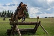Hest til salg - MAJGÅRDENS EPO-HOTSHOT
