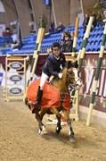 Hest til salg - CAPVERT DU GEER