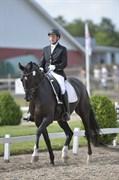 Hest til salg - BONNIE GERSDORF