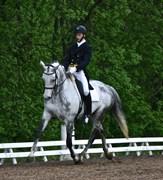 Hest til salg - SANDELMOSEGÅRDS SISO