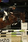 Hest til salg - LINDEHØJS LAMI