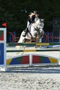 Hest til salg - KILMINCHY CHANTELLE