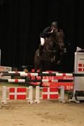 Hest til salg - DEA LYKKEDAL
