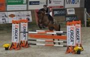 Hest til salg - DOLORES