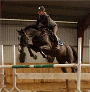 Hest til salg - LIMONCELLA