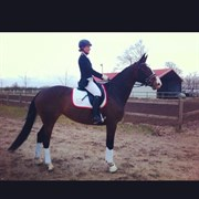 Hest til salg - RICHENNA M