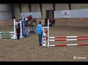 Hest til salg - FIGHTER SURPRISE