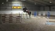 Hest til salg - GEORGIA B
