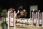Hest til salg - FRU SMITH