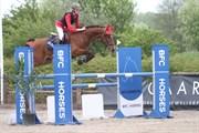 Hest til salg - BISSELBJERG GÅRDENS MALIBOU