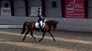 Hest til salg - STABYGÅRDS ATEZA
