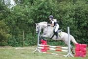 Hest til salg - PILGAARDS LADY ELIZA