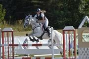 Hest til salg - Silverbella
