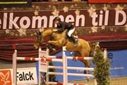 Hest til salg - Bibette
