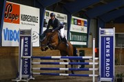 Hest til salg - TANHOLMS KELLO