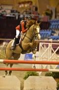 Hest til salg - LUNDEHØJGAARDS QUIET STEP