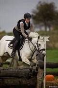 Hest til salg - ATHENA