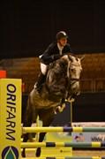 Hest til salg - MAGIC QUINE