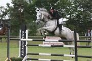 Hest til salg - CORONA SAN