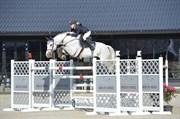 Hest til salg - ACORADA 13