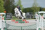 Hest til salg - LEGACORRY