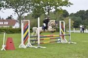 Hest til salg - RIWERSTOWN BLONDE