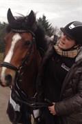 Hest til salg - COELENHAGE'S REZA