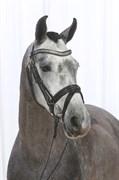 Hest til salg - HEDEVANGS AICHA