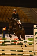 Hest til salg - CAJA B