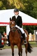 Hest til salg - RØGILD'S CABATINI Z
