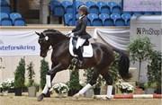 Hest til salg - 481 - BALL ROOM DIVA