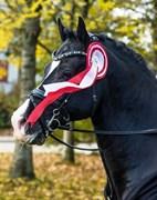 Hest til salg - VALHALLAS(DK) ZORRO