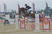 Hest til salg - Mørkbak`s Maji