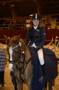 Hest til salg - LADY ANAIS