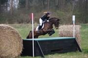 Hest til salg - Lynette Søblink
